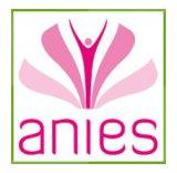Anies