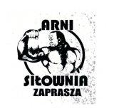Siłownia Arni