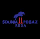 Pegaz Team