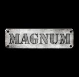 Magnum Arena